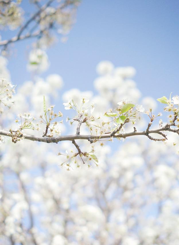 When Grace Trumps Guilt | Faith and Composition